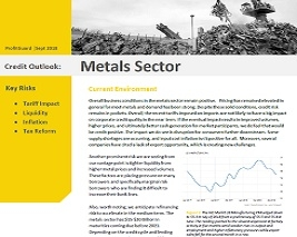 Credit Risk Outlook: Metals Sector